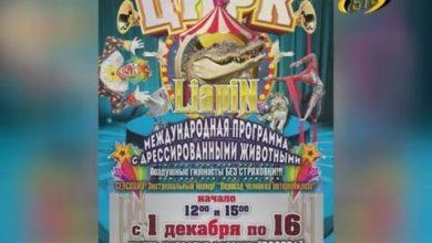 Photo of Цирк шапито с гастролями в Бендерах