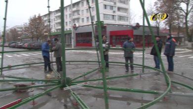 Photo of Зеленый символ праздника