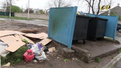 Photo of Экологический рейд