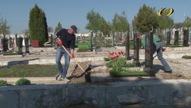 Photo of Подготовка к Радонице