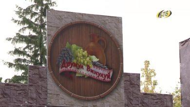 Photo of Фестиваль вина и винограда