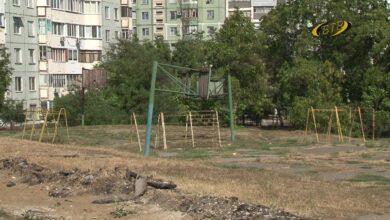 Photo of Новая жизнь пустыря