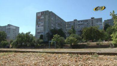 Photo of Зелёная зона рядом с домом