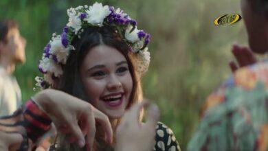 Photo of Киноканикулы с БТВ