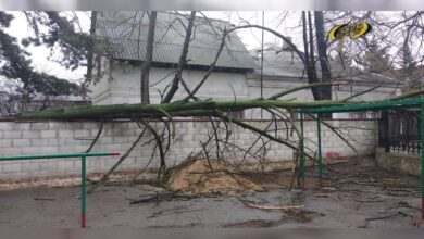 Photo of Под натиском ураганного ветра